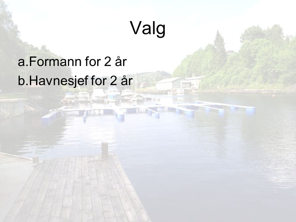 Valg a. Formann for 2 år b. Havnesjef for 2 år