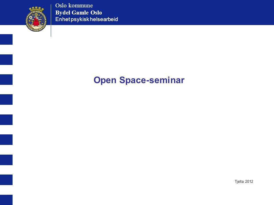 Open Space-seminar Oslo kommune Bydel Gamle Oslo Oslo kommune