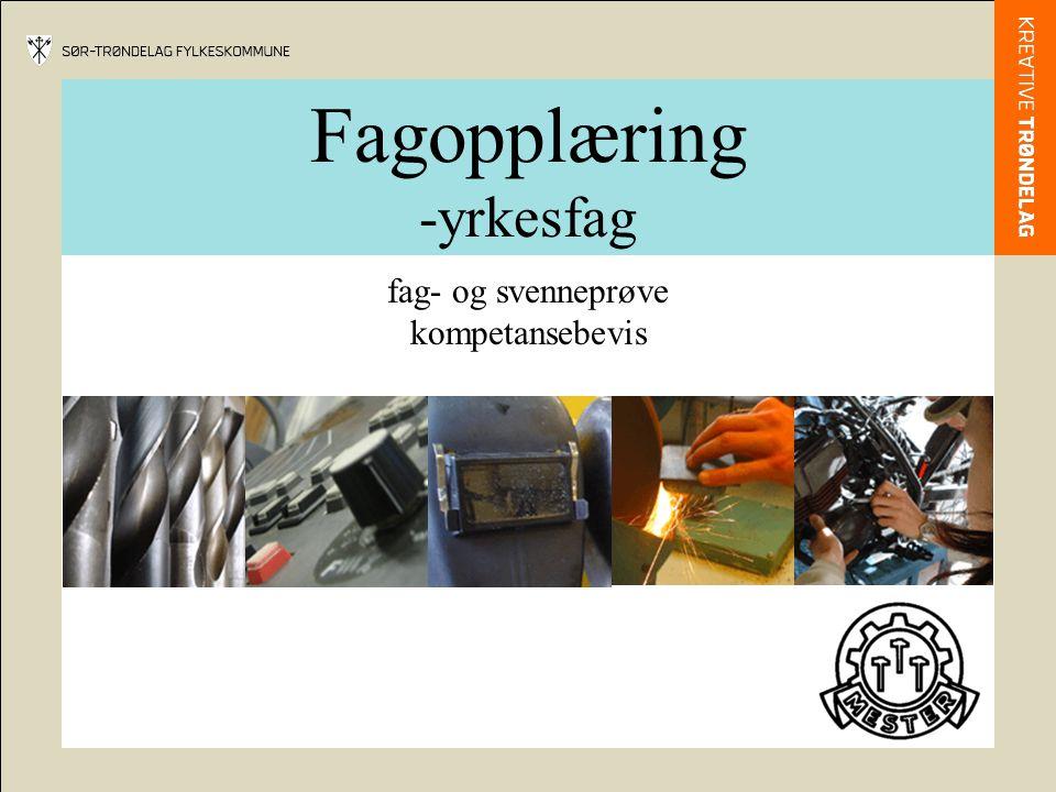Fagopplæring -yrkesfag