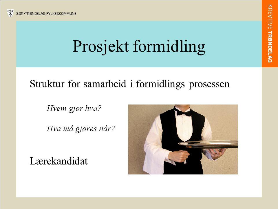 Prosjekt formidling Struktur for samarbeid i formidlings prosessen