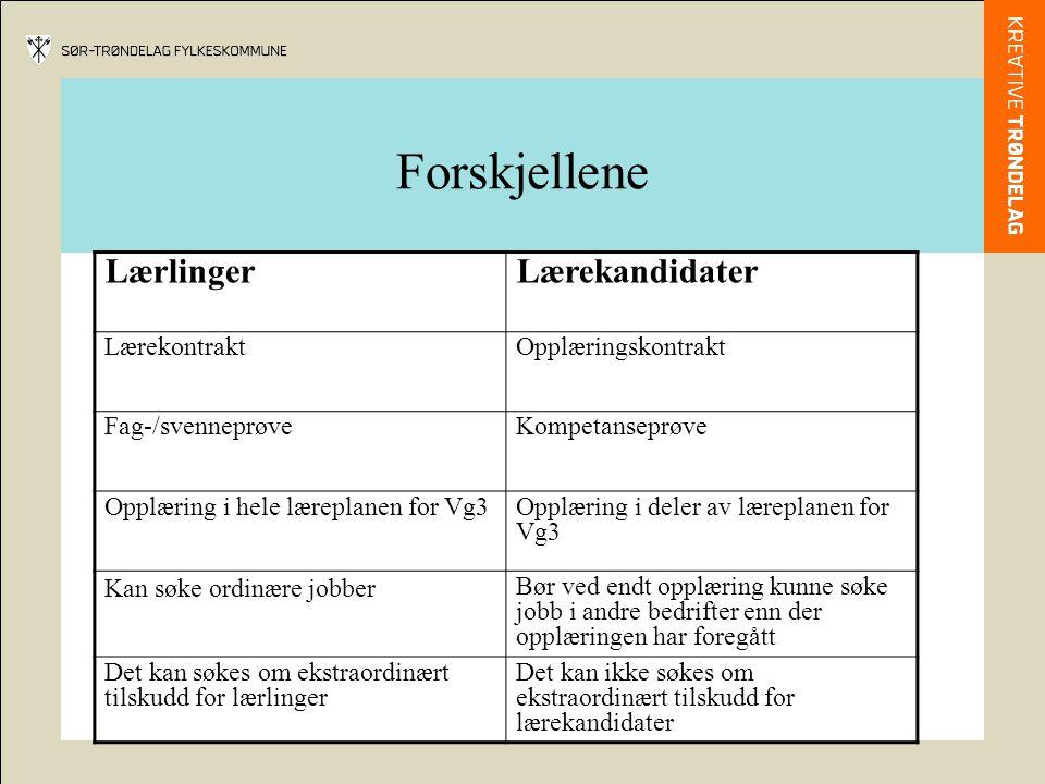 Forskjellene Lærlinger Lærekandidater Lærekontrakt Opplæringskontrakt