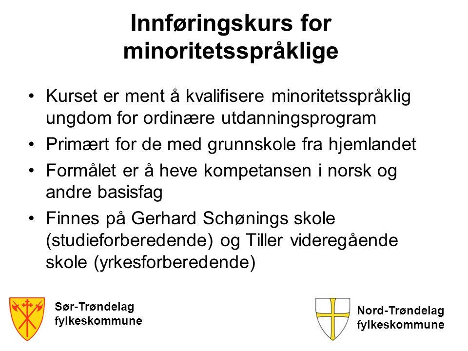 Innføringskurs for minoritetsspråklige