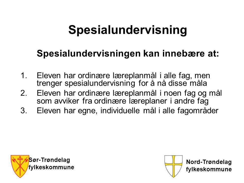 Spesialundervisning Spesialundervisningen kan innebære at: