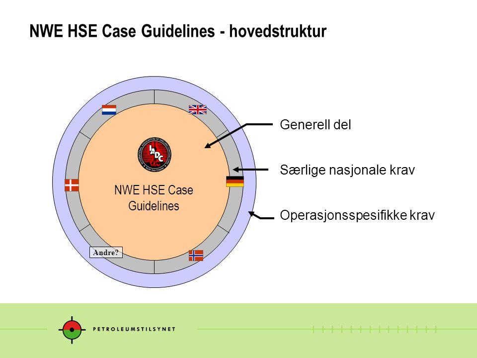 NWE HSE Case Guidelines - hovedstruktur