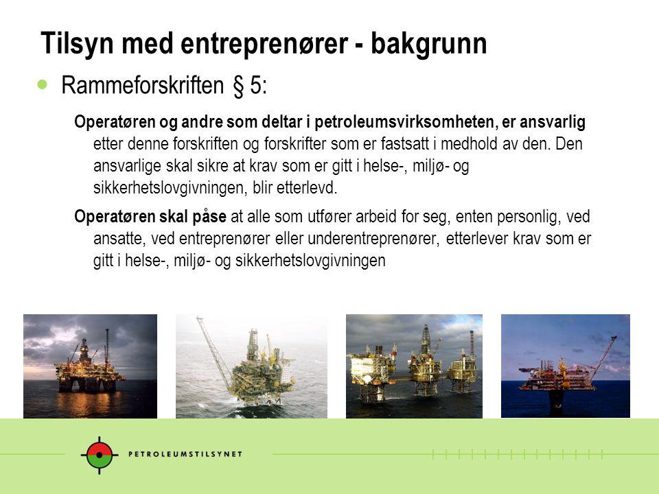 Tilsyn med entreprenører - bakgrunn
