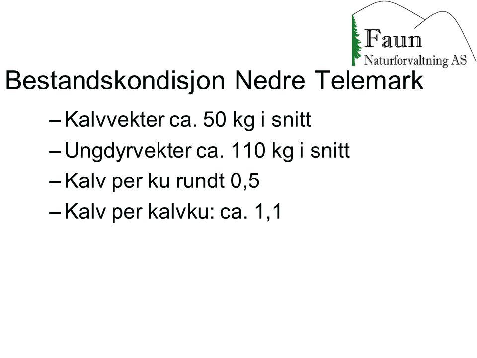 Bestandskondisjon Nedre Telemark