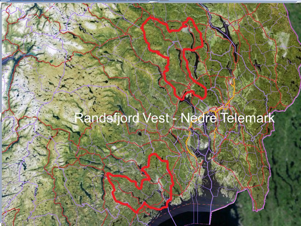 Randsfjord Vest - Nedre Telemark