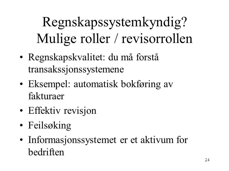 Regnskapssystemkyndig Mulige roller / revisorrollen
