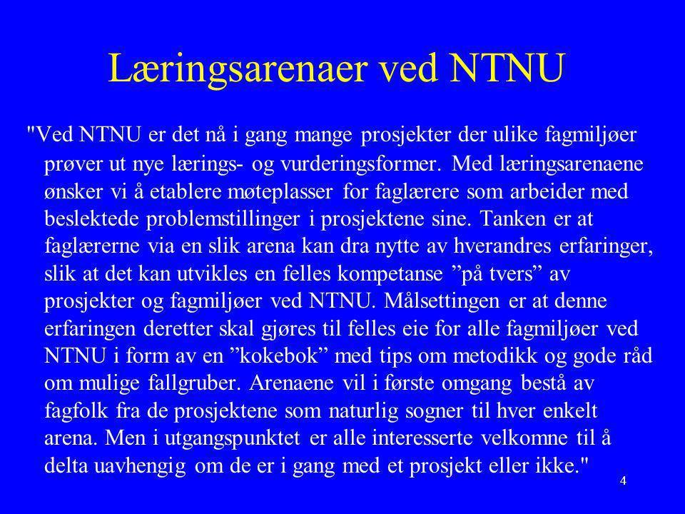 Læringsarenaer ved NTNU