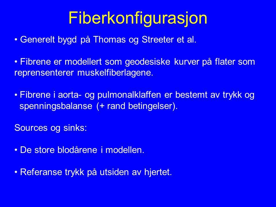 Fiberkonfigurasjon Generelt bygd på Thomas og Streeter et al.