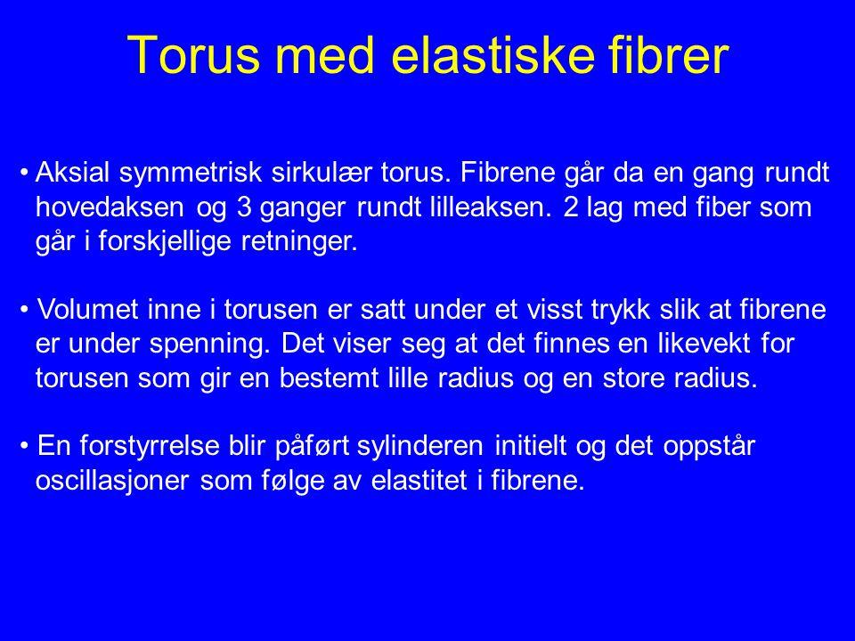 Torus med elastiske fibrer
