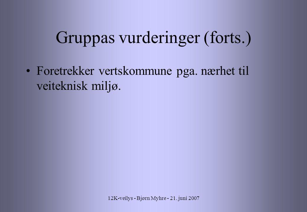 Gruppas vurderinger (forts.)