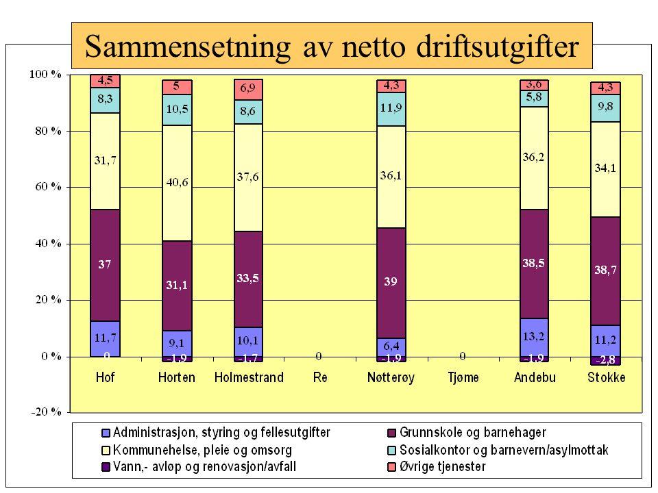 Sammensetning av netto driftsutgifter