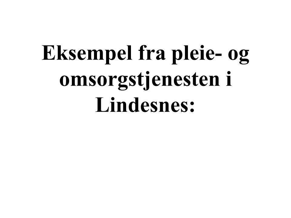 Eksempel fra pleie- og omsorgstjenesten i Lindesnes: