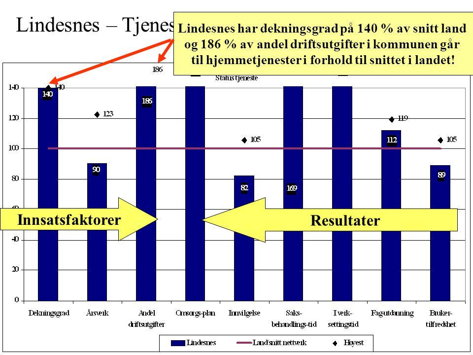 Lindesnes – Tjenesteprofil hjemmetjeneste