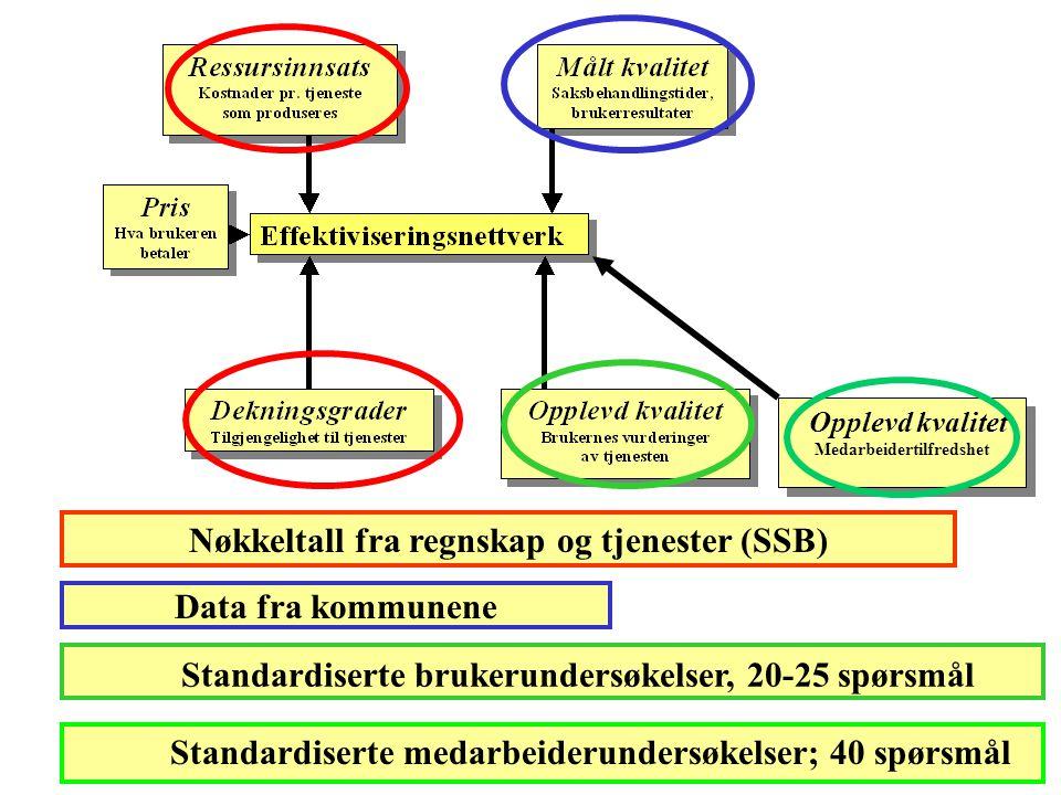 Nøkkeltall fra regnskap og tjenester (SSB)