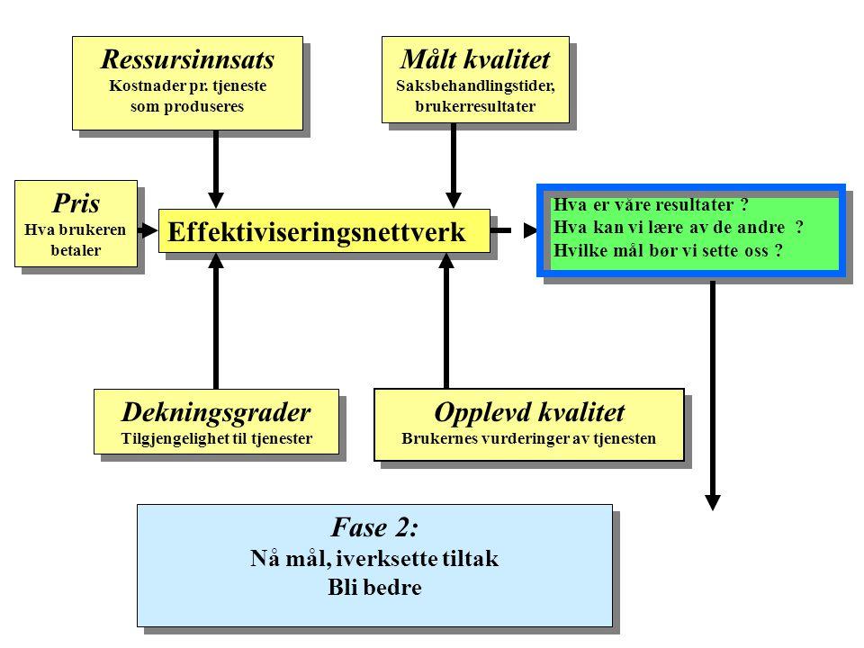 Effektiviseringsnettverk