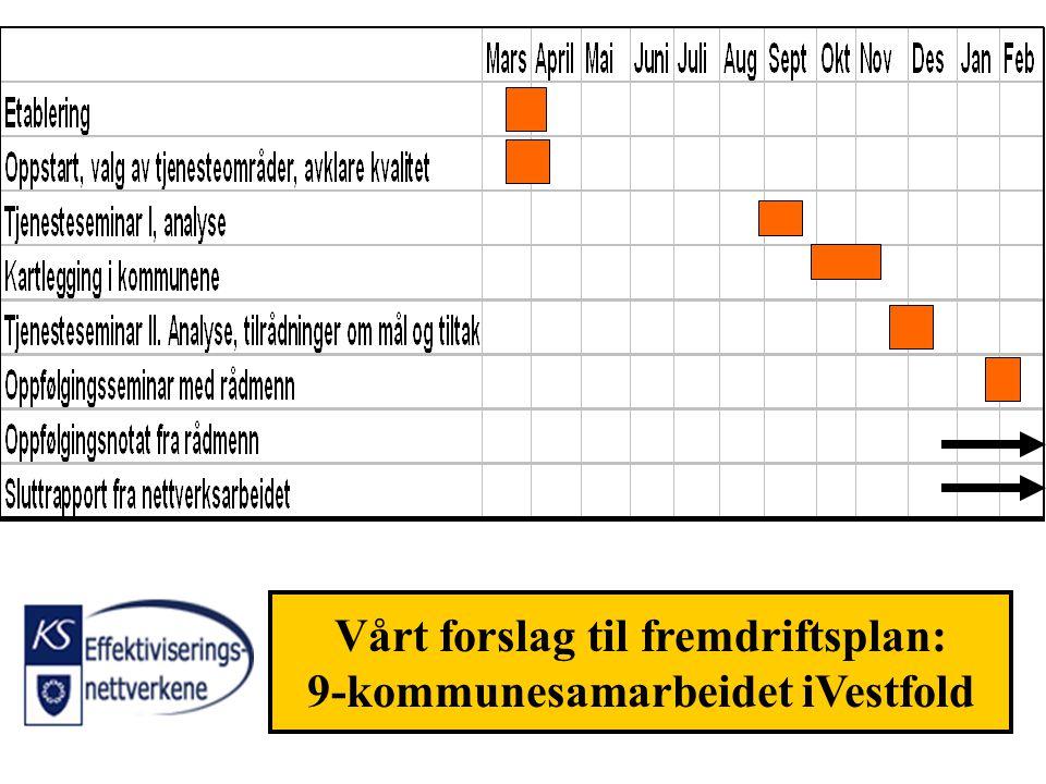 Vårt forslag til fremdriftsplan: 9-kommunesamarbeidet iVestfold