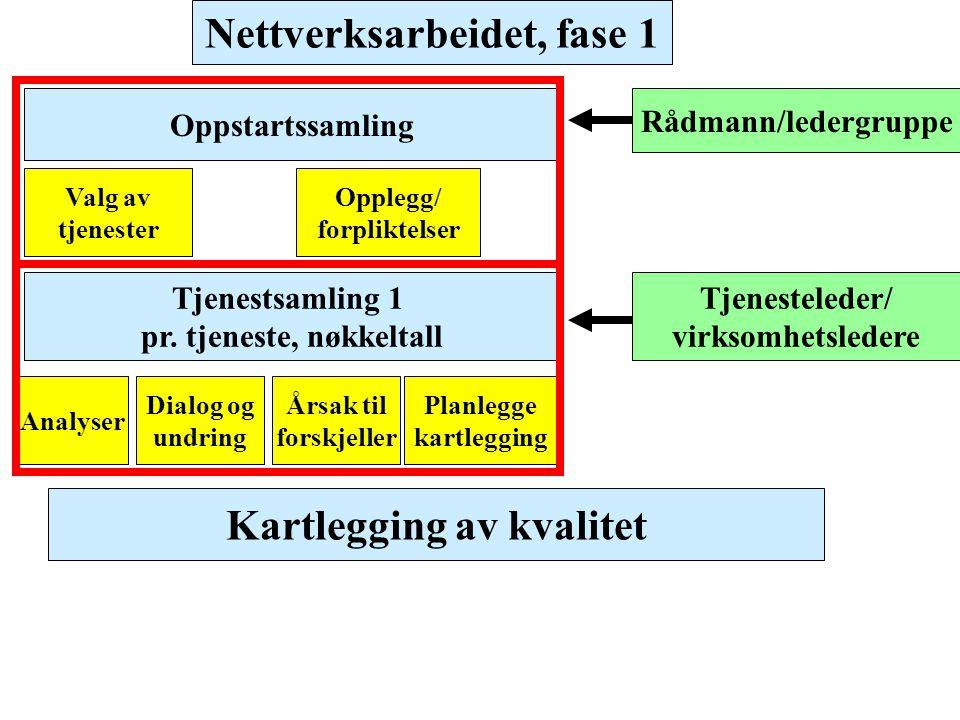 Nettverksarbeidet, fase 1 Kartlegging av kvalitet