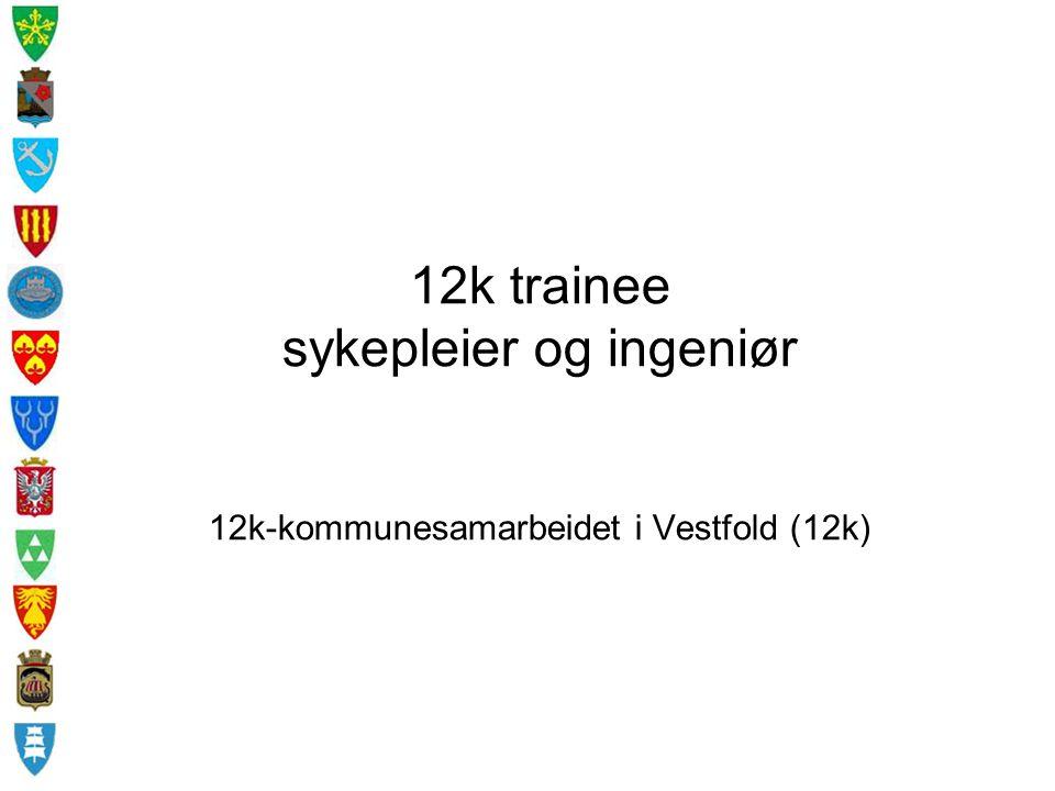 12k trainee sykepleier og ingeniør 12k-kommunesamarbeidet i Vestfold (12k)