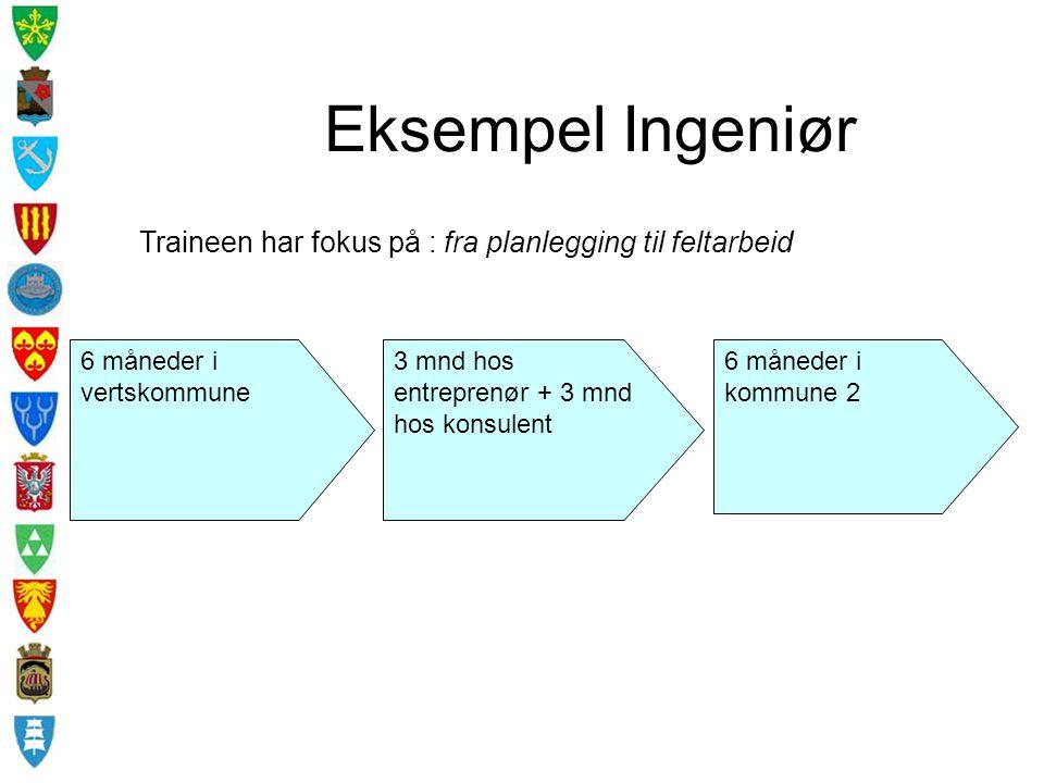 Eksempel Ingeniør Traineen har fokus på : fra planlegging til feltarbeid. 6 måneder i vertskommune.