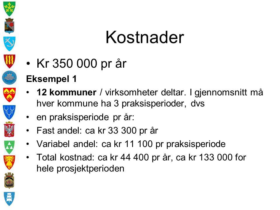 Kostnader Kr 350 000 pr år Eksempel 1