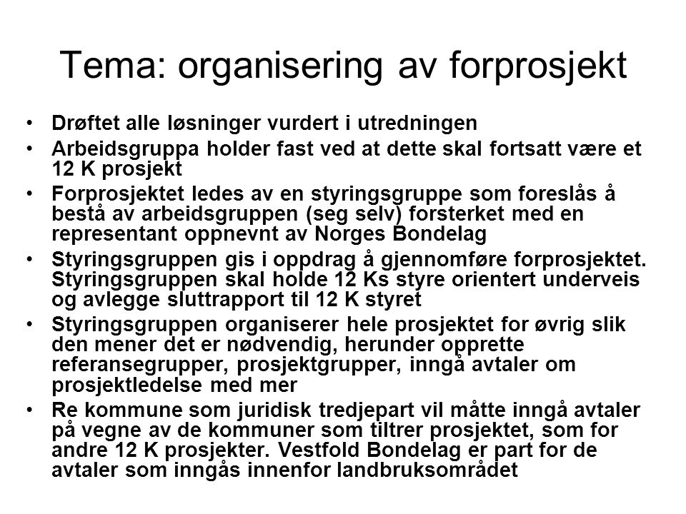 Tema: organisering av forprosjekt