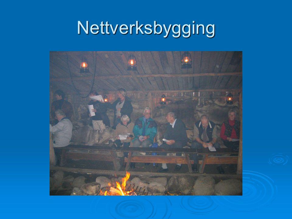 Nettverksbygging