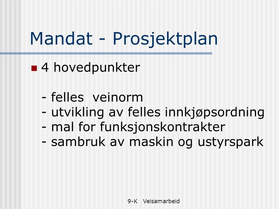 Mandat - Prosjektplan