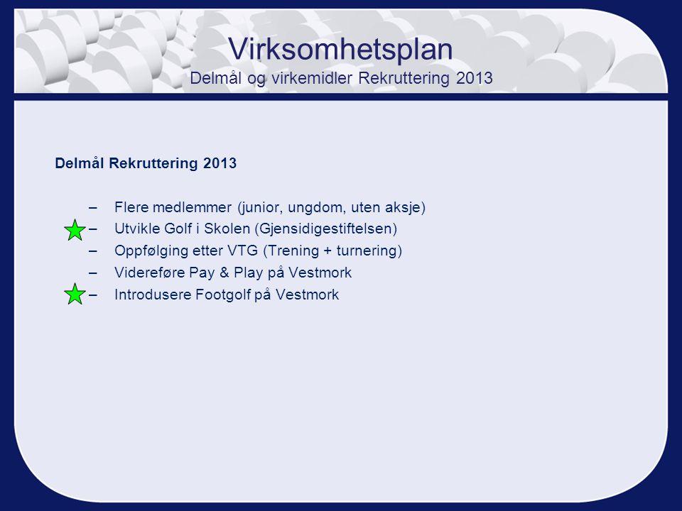 Virksomhetsplan Delmål og virkemidler Rekruttering 2013