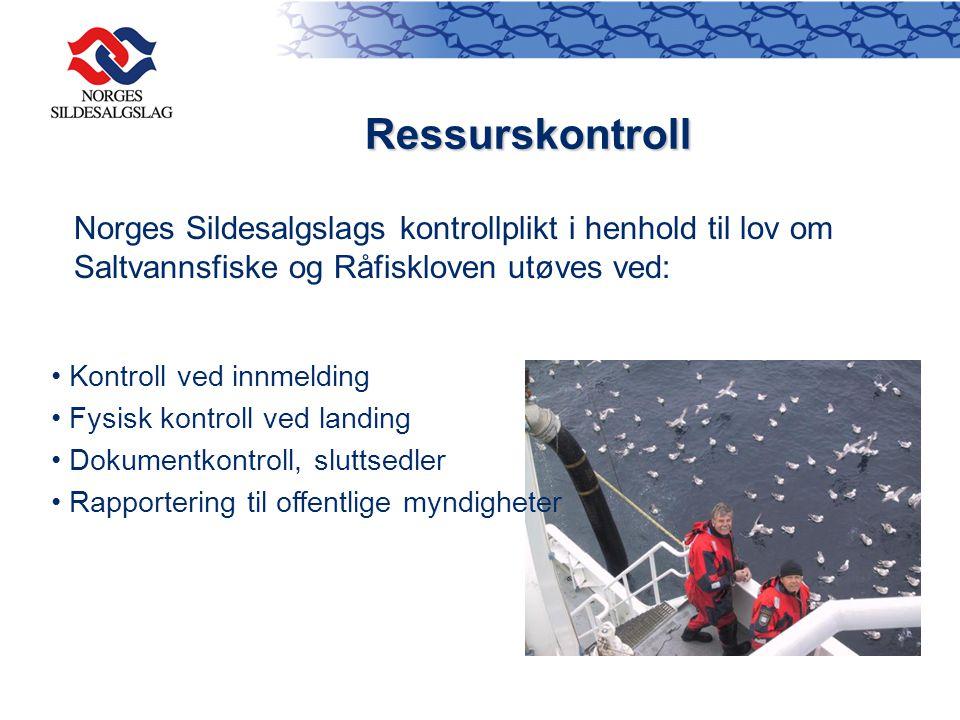 Ressurskontroll Norges Sildesalgslags kontrollplikt i henhold til lov om Saltvannsfiske og Råfiskloven utøves ved: