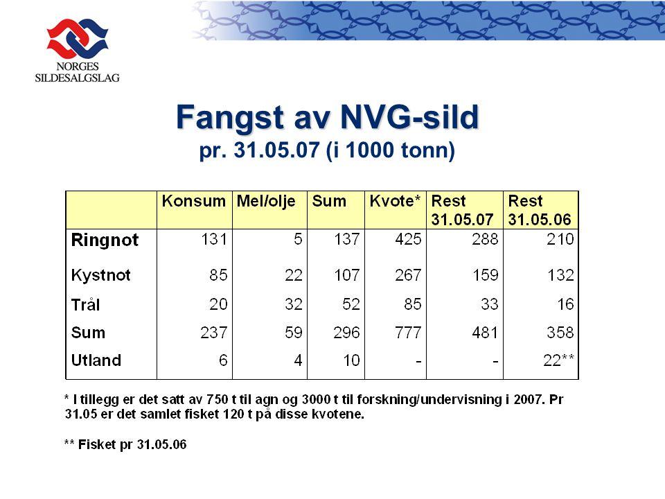 Fangst av NVG-sild pr. 31.05.07 (i 1000 tonn)