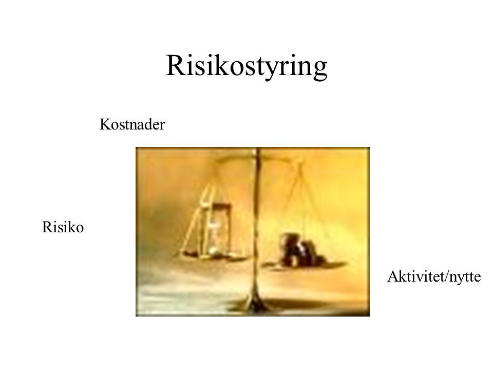 Risikostyring Kostnader Risiko Aktivitet/nytte