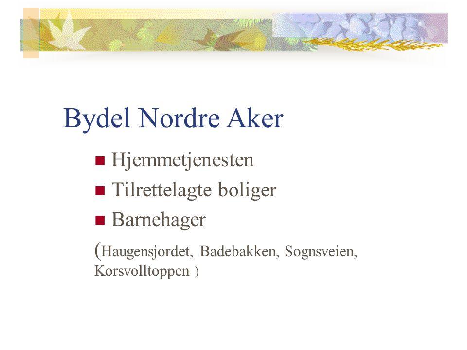 Bydel Nordre Aker Hjemmetjenesten Tilrettelagte boliger Barnehager