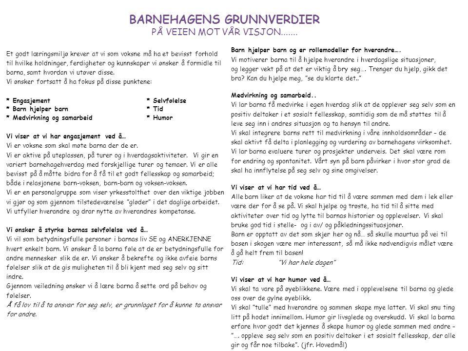 BARNEHAGENS GRUNNVERDIER