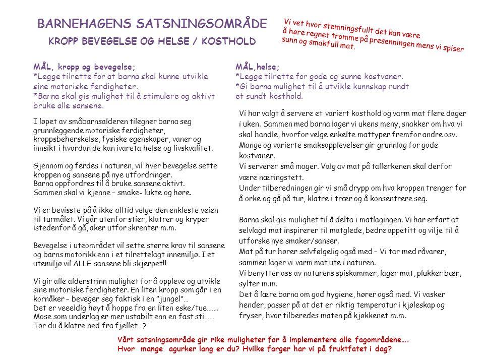 BARNEHAGENS SATSNINGSOMRÅDE