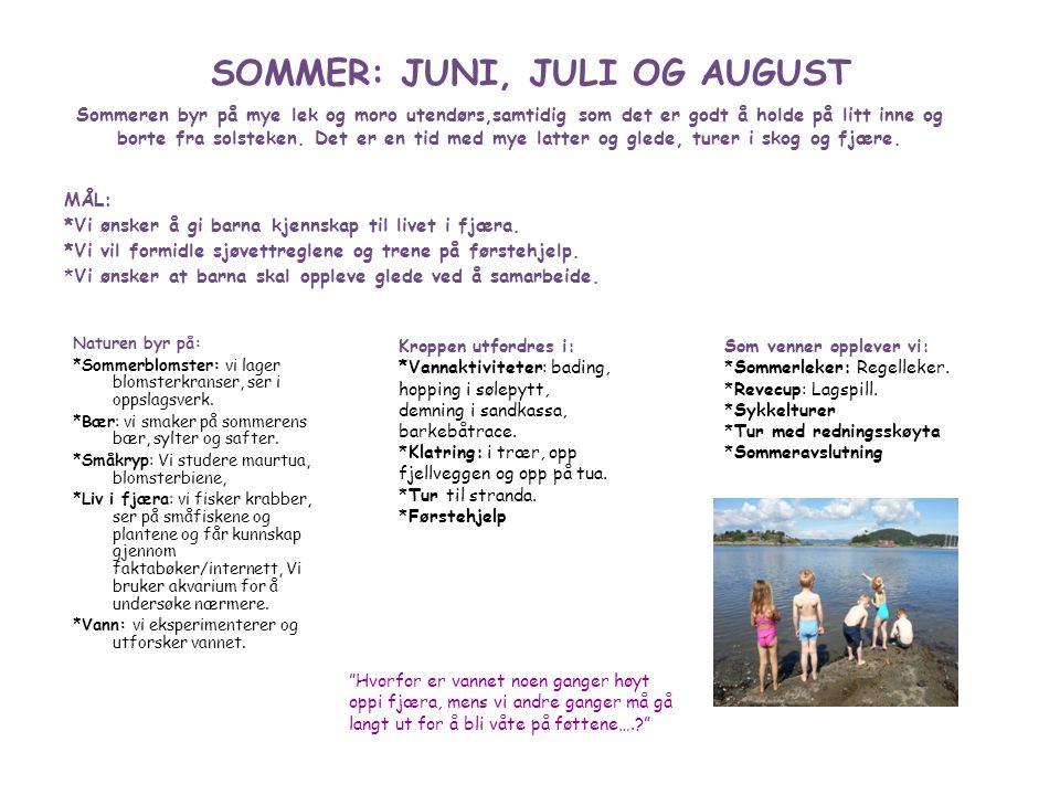 SOMMER: JUNI, JULI OG AUGUST