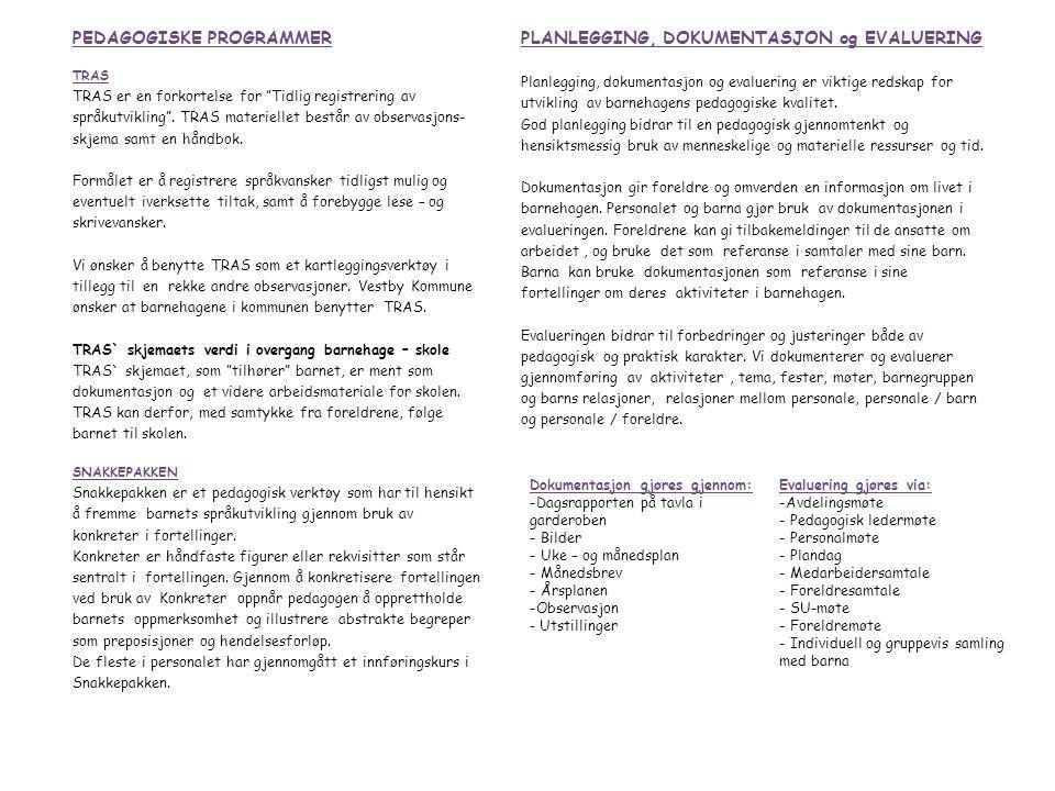 PEDAGOGISKE PROGRAMMER PLANLEGGING, DOKUMENTASJON og EVALUERING