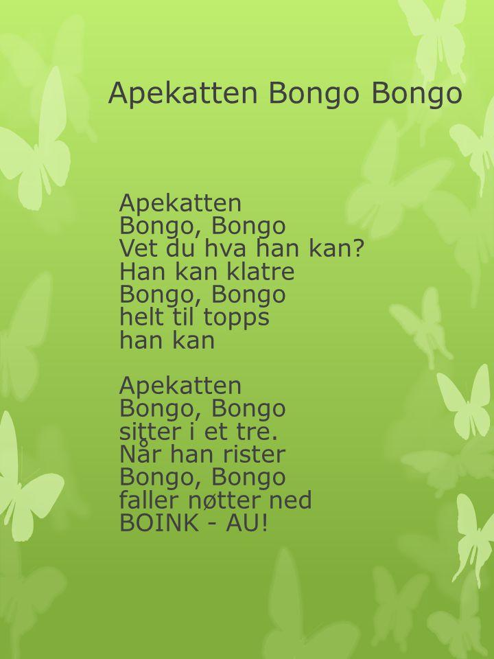 Apekatten Bongo Bongo