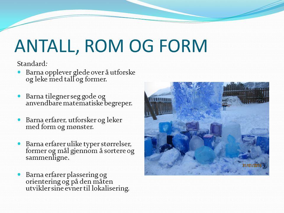 ANTALL, ROM OG FORM Standard: