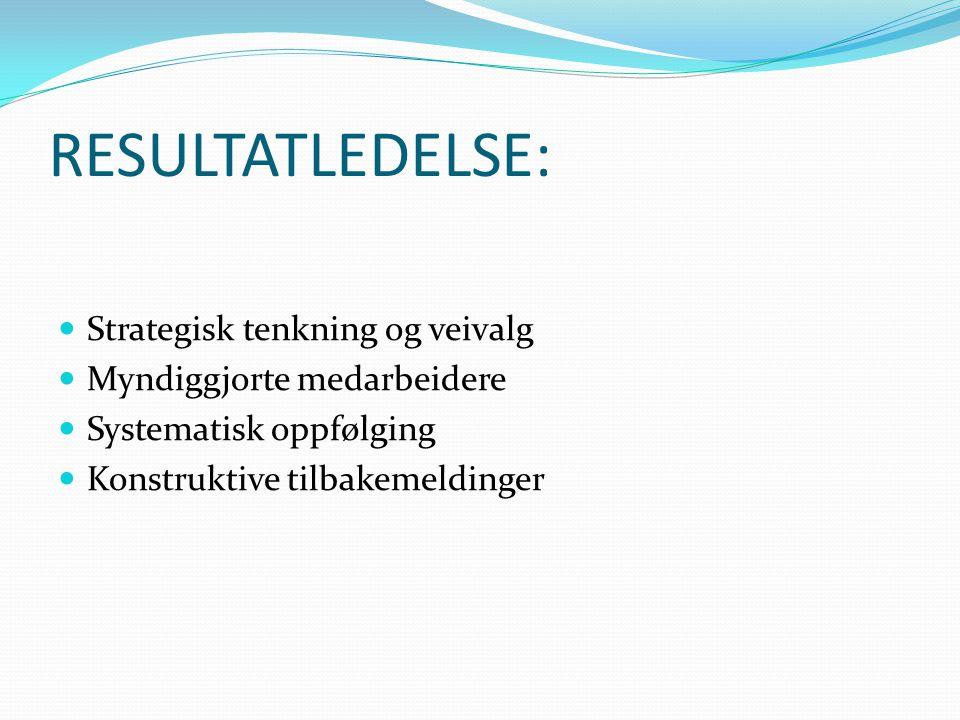 RESULTATLEDELSE: Strategisk tenkning og veivalg