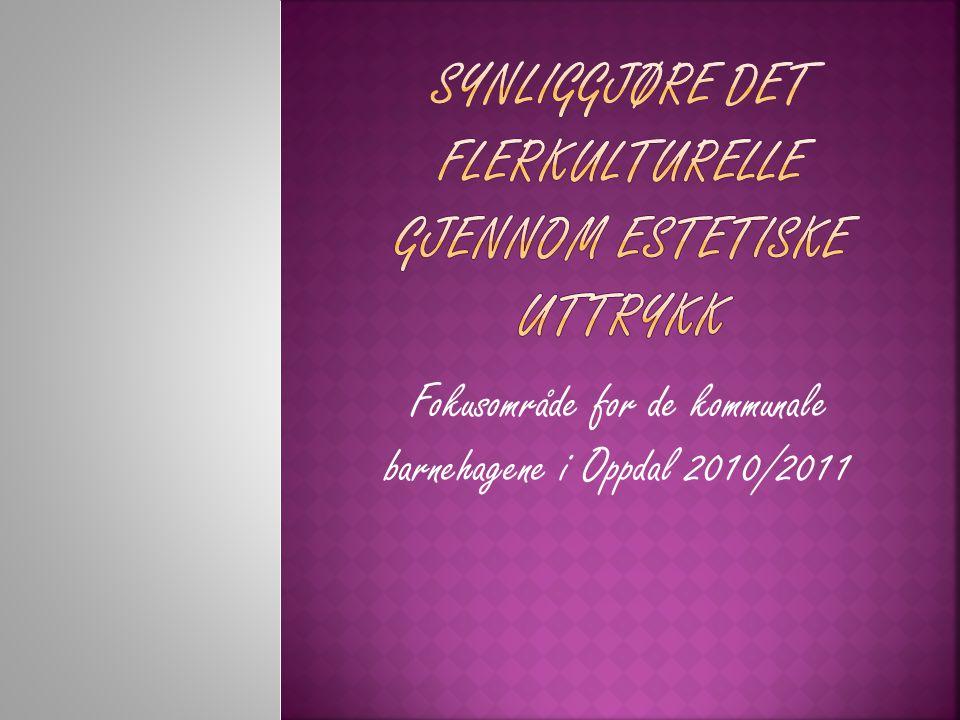 SYNLIGGJØRE DET FLERKULTURELLE GJENNOM ESTETISKE UTTRYKK