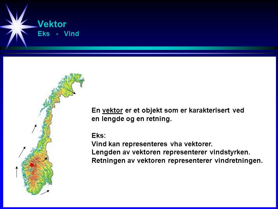 Vektor Eks - Vind En vektor er et objekt som er karakterisert ved