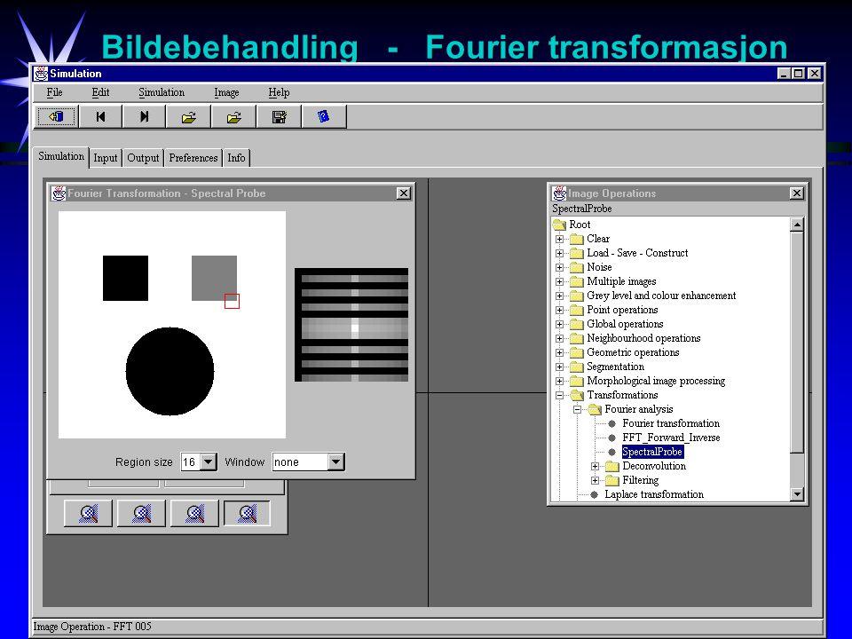 Bildebehandling - Fourier transformasjon