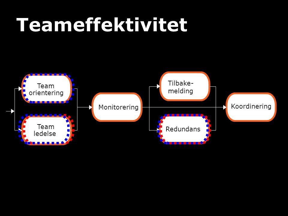 Teameffektivitet Tilbake-melding Team orientering Monitorering