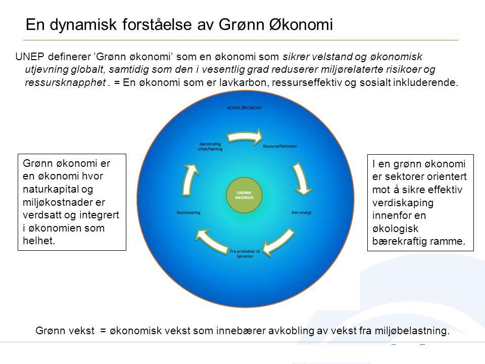 En dynamisk forståelse av Grønn Økonomi