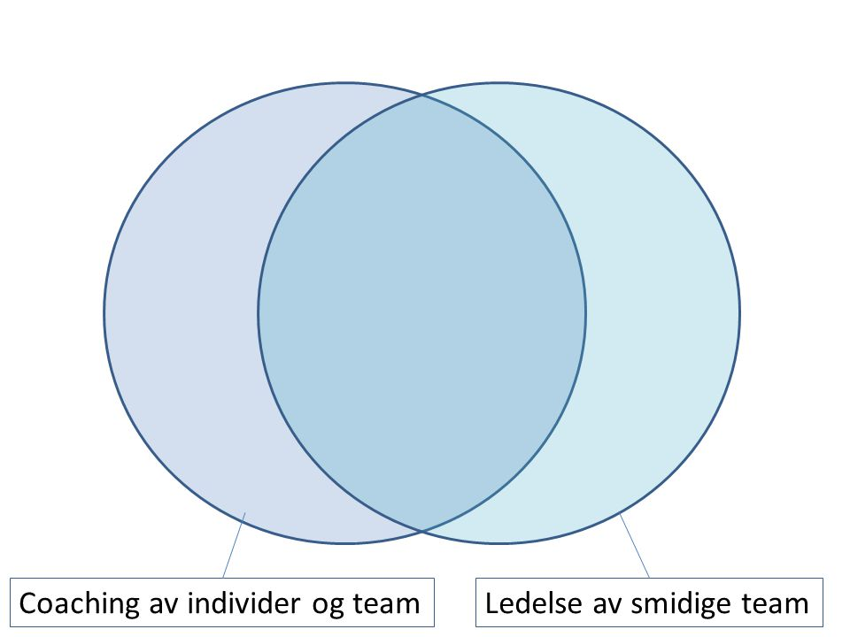 Coaching av individer og team