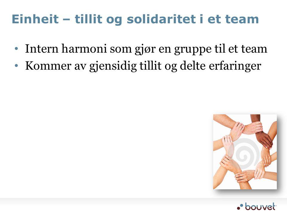 Einheit – tillit og solidaritet i et team