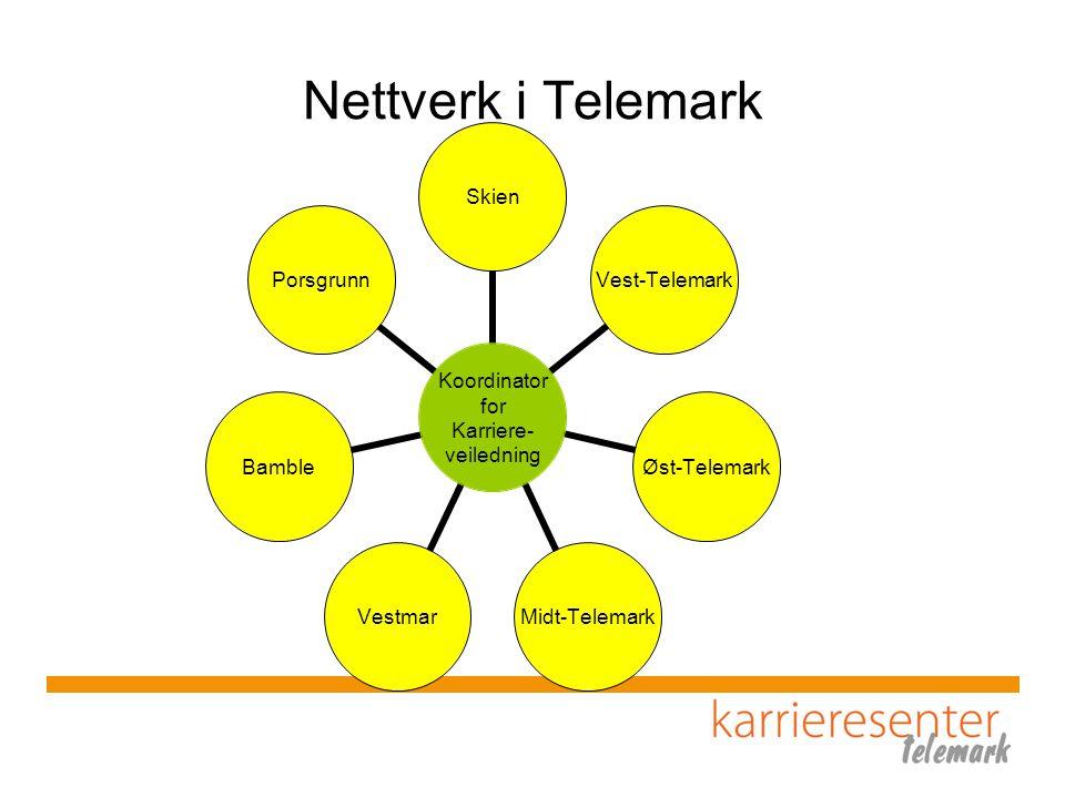 Nettverk i Telemark
