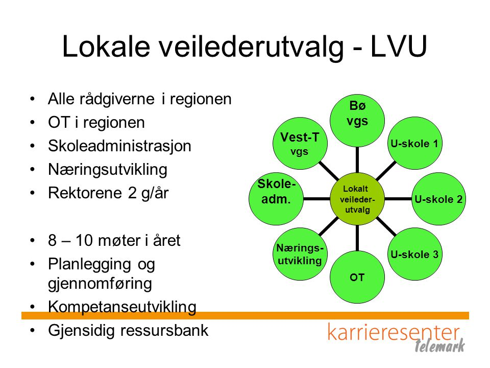 Lokale veilederutvalg - LVU